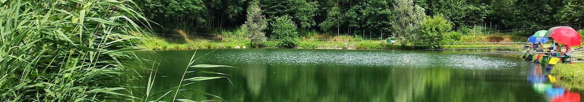GAM S.n.c., laghi Vita, gare di pesca stagione 2015